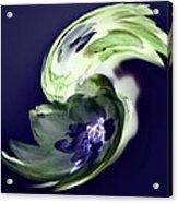 Incana abstract 1 Acrylic Print
