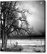 Incoming Storm Acrylic Print by Cat Connor