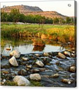 Independence Creek Preserve 2am-106000 Acrylic Print
