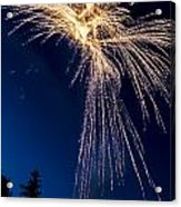 Independence Day 2014 8 Acrylic Print by Alan Marlowe