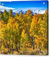 Independence Pass Autumn Colors Acrylic Print