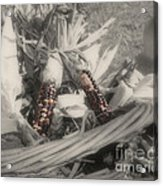 Indian Corn In Basket Partial Color Acrylic Print