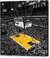 Indiana Pacers Special Acrylic Print by David Haskett