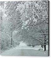 Indiana Snow Acrylic Print