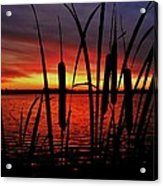 Indiana Sunset Acrylic Print by Benjamin Yeager