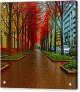 Indianapolis Autumn Trees Oil Acrylic Print by David Haskett
