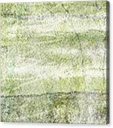 Indwell Acrylic Print