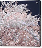 Inferred Spring Acrylic Print