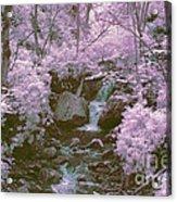 Infrared Mountain Stream Acrylic Print