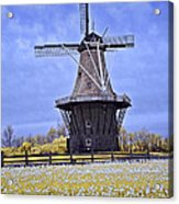 Infrared Photo Of The Dezwaan Dutch Windmill On Windmill Island In Holland Michigan Acrylic Print