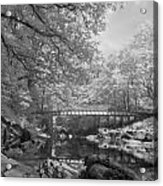 Infrared River Acrylic Print
