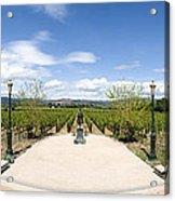 Inglenook Vineyards Acrylic Print