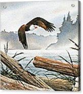 Inland Sea Eagle Acrylic Print