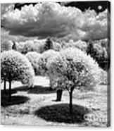 Innisfree Garden Acrylic Print