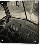 Inside An Old Junker Car Acrylic Print