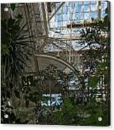 Inside Beautiful Old Greenhouse Acrylic Print