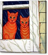 Orange Cats Looking Out Window Acrylic Print