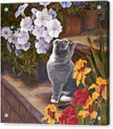 Inspecting The Blooms Acrylic Print by Evie Cook