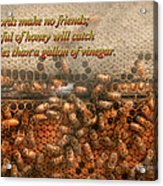 Inspiration - Apiary - Bee's - Sweet Success - Ben Franklin Acrylic Print by Mike Savad