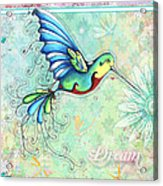 Inspirational Hummingbird Floral Flower Art Painting Dream Quote By Megan Duncanson Acrylic Print