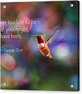Inspirational Hummingbird Acrylic Print