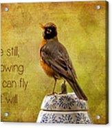Inspirational Robin Acrylic Print