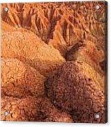 Interesting Desert Landscape Acrylic Print
