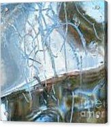 Interior Issues  Acrylic Print