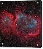 Interstellar Embryo  Ic 1848, The  Soul Acrylic Print