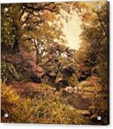 Intimate Landscape Acrylic Print by Jessica Jenney