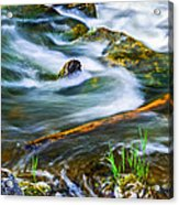 Intimate With River Acrylic Print
