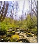 Into The Great Acrylic Print