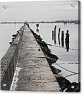Into The Gulf Acrylic Print