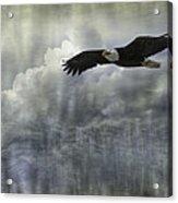 Into The Heavens Acrylic Print