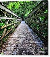 Into The Jungle  Acrylic Print