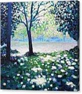 Into The Light   Cropped Version Acrylic Print by John  Nolan