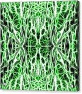 Into The Matrix Acrylic Print