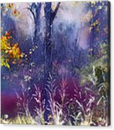 Into The Mist - A Dream State Acrylic Print