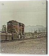 Into The Mojave Acrylic Print