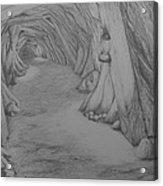 Into The Mountain Acrylic Print