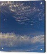 Into The Sky Acrylic Print