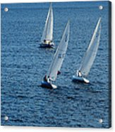 Into The Wind - Crisp White Sails On Blue Acrylic Print