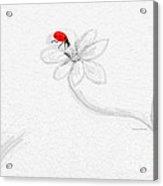 Invisible With Ladybug Acrylic Print