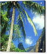 Io Valley Palm And Needle Maui Hawaii Acrylic Print