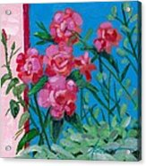 Ioannina Garden Acrylic Print