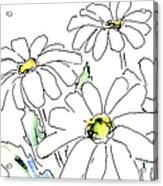 iPhone-Case-Flower-Daisy2 Acrylic Print