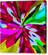 Iphone Cases Colorful Flowers Abstract Roses Gardenias Tiger Lily Florals Carole Spandau Cbs Art 179 Acrylic Print by Carole Spandau