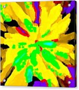 Iphone Cases Colorful Flowers Abstract Roses Gardenias Tiger Lily Florals Carole Spandau Cbs Art 182 Acrylic Print