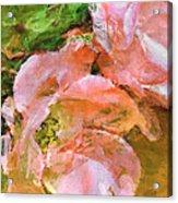 Iphone Pink Rose Digital Paint Acrylic Print