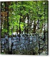 Ireland Stone Wall And Trees Acrylic Print